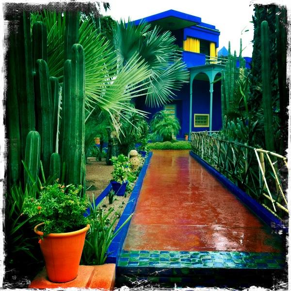 Majorelle Gardens Marrakesh Dear Designer