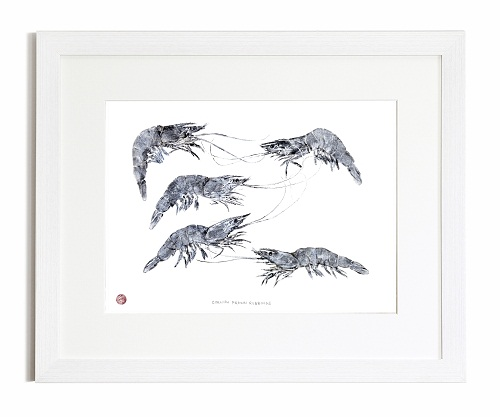 Cornish Prawn Gyotaku Print
