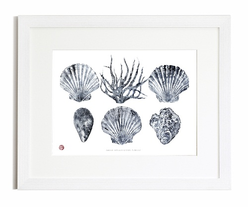 Cornish Shells And Coral Gyotaku Print