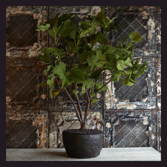 Abigail Ahern Artificial Plants 3