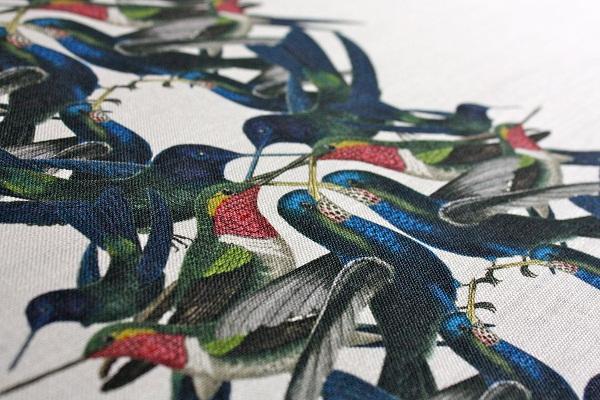 Tradescant & Son Hummingbird Stripe