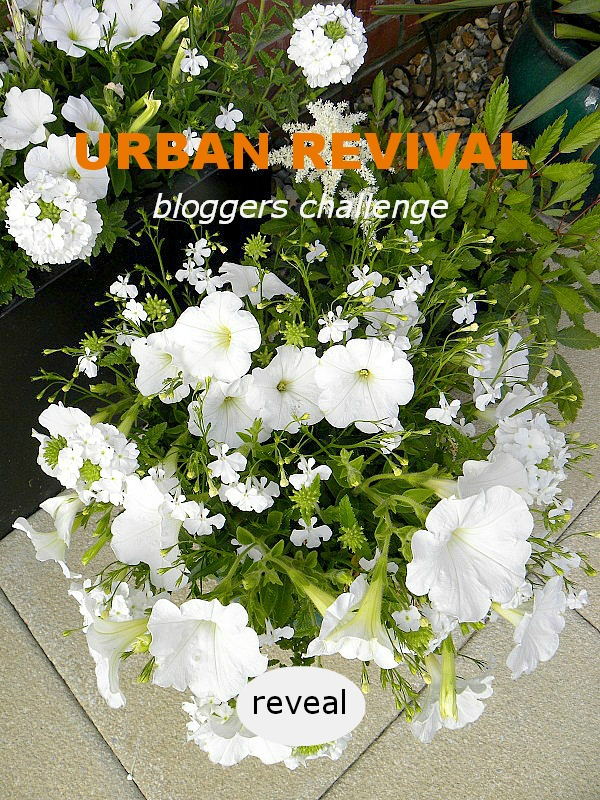 #urban revival - Bloggers Challenge - Dear Designers Blog