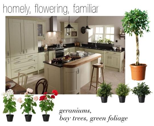 Plants in the Kitchen via Dear Designer's Blog [2]