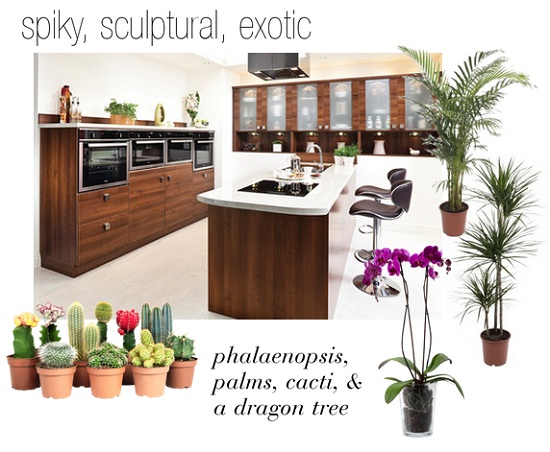 Plants in the Kitchen via Dear Designer's Blog