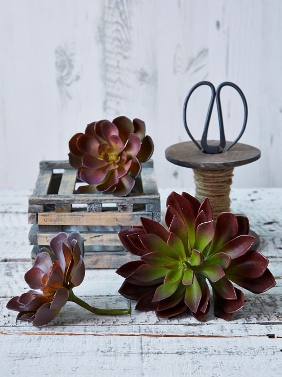 Faux Succulents from Nordic House [1]