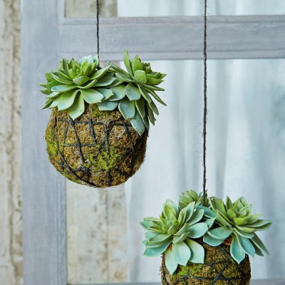 Faux Succulents from Nordic House [2]