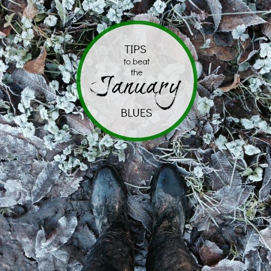 Tips to Beat the January Blues via Dear Designer's Blog 1