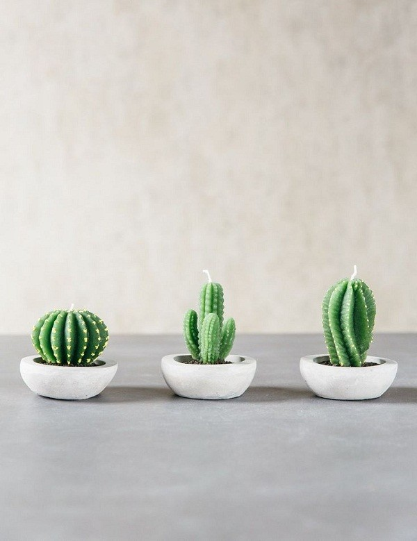 Cactus candles via Rose and Grey