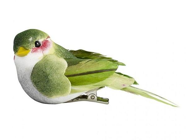 Green bird clip via Graham and Green