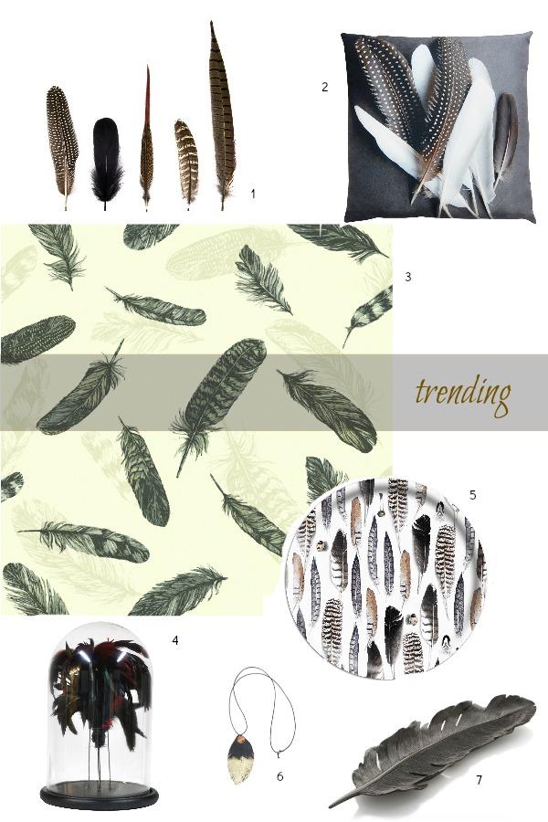 Feathers - trending {1}