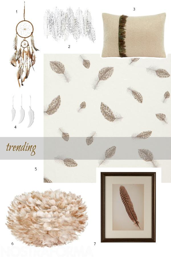 Feathers - trending