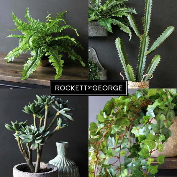 Rockett St George Faux Plants