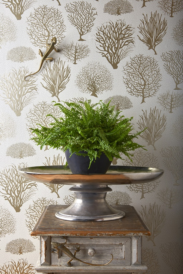 Cole & Son Curio Seafern Wallpaper