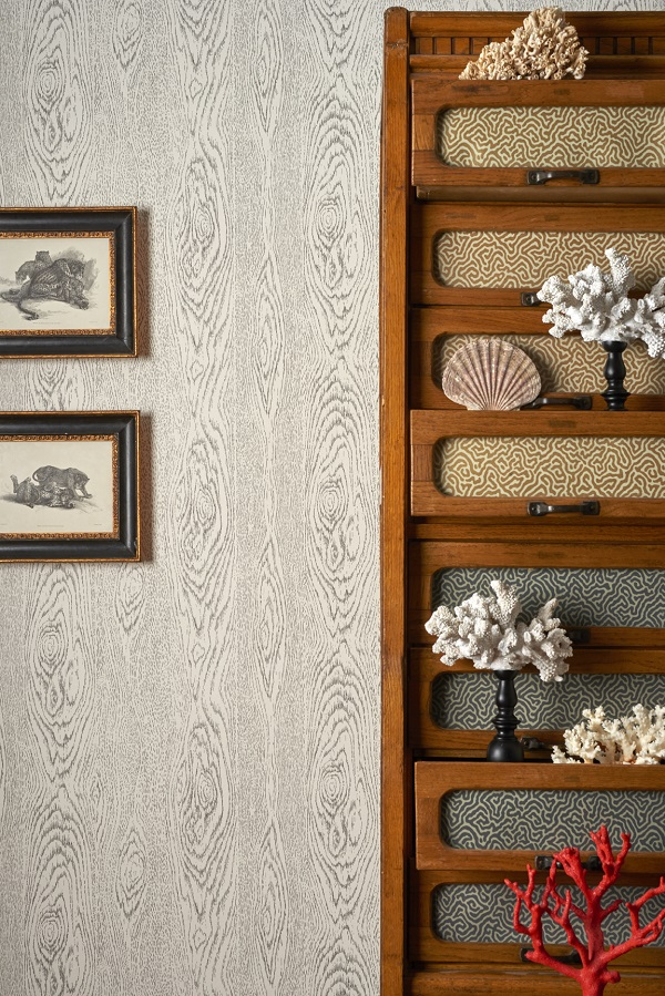Cole & Son Curio Wood Grain wallpaper