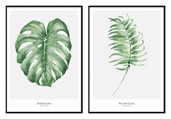 Desenio Botanical 2