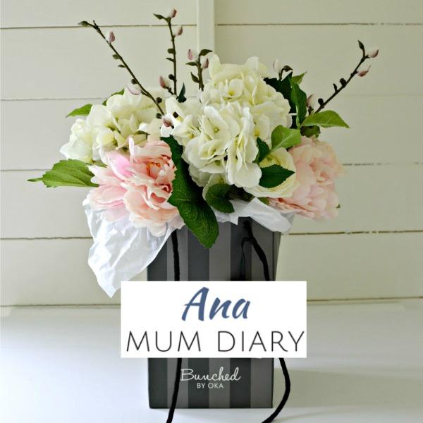 Ana Mum Diary