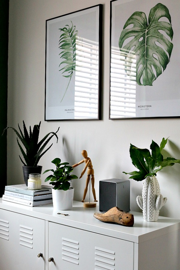 Amazing Office Plants On Pinterest  Interior Plants Offices And Desk Plant