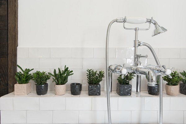House Tour - London - White Glazed Tiles make a great backdrop for a collection of succulents
