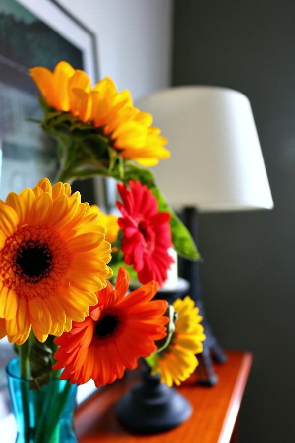 Brighten up dark corners with a colourful display of flowers