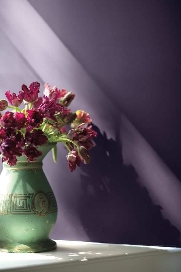 wall-colour-shadow-2117-30-vase-detail
