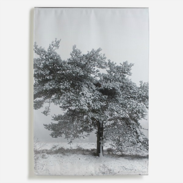 Totally Nordic - winter trees wall hanging by Nic Miller