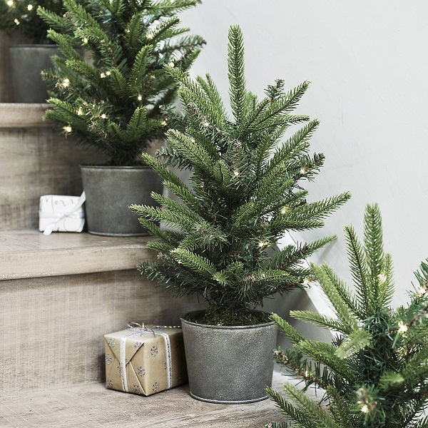Christmas decorations = fir trees in zinc buckets