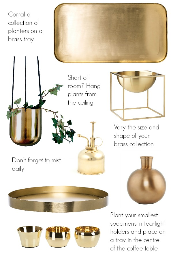 ideas for brass planters