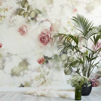 Incandescent Rose Wallpaper from Ellie Cashman