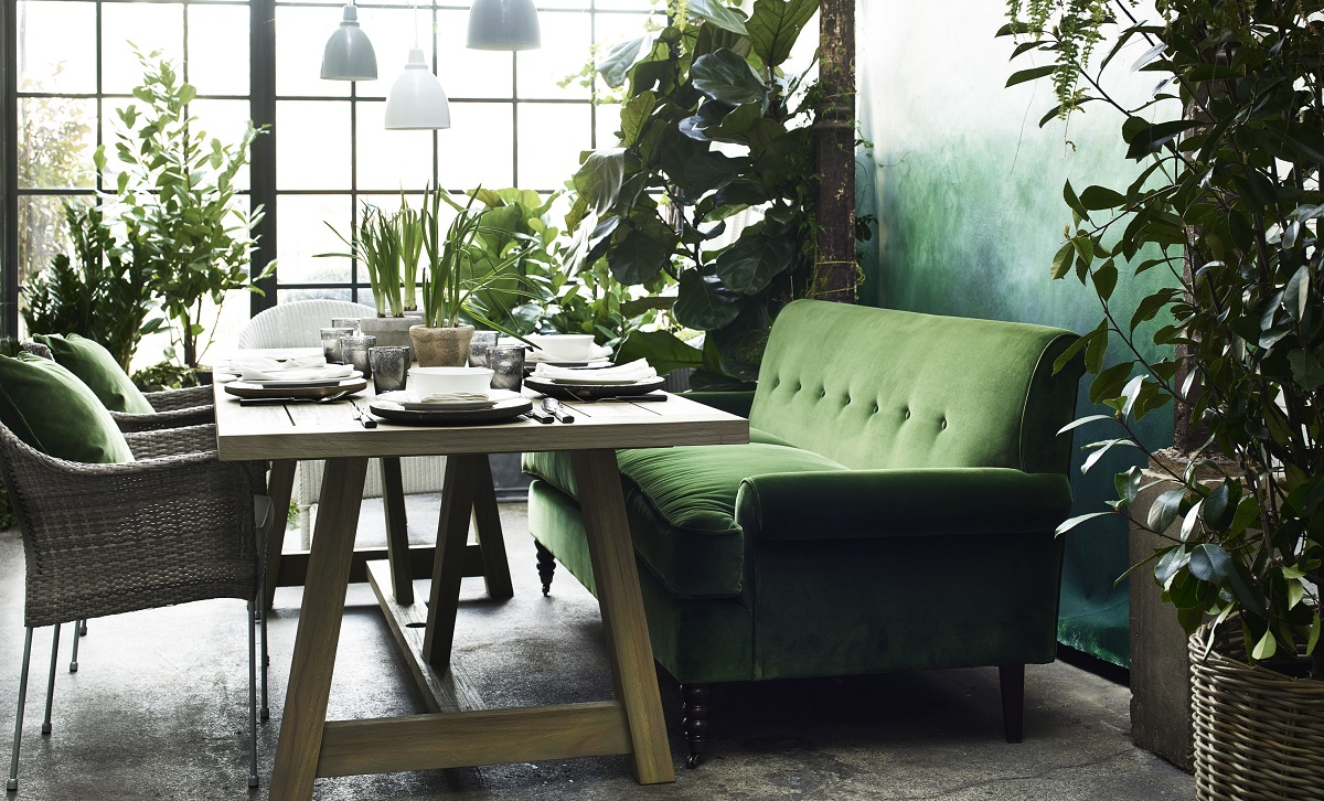 a Garden Room Filled with Plants and a velvet sofa