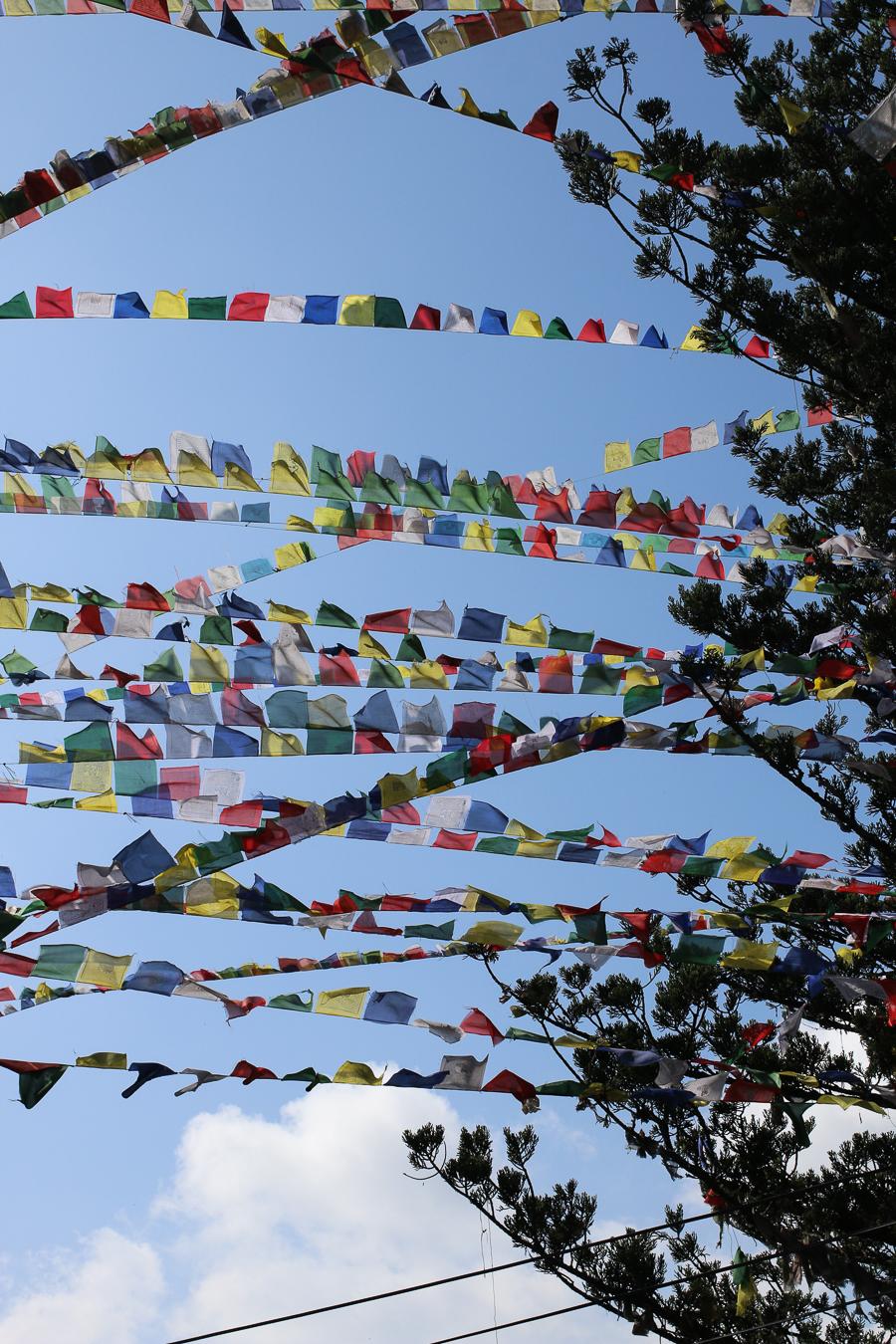 Nepal. Fluttering Prayer Flags