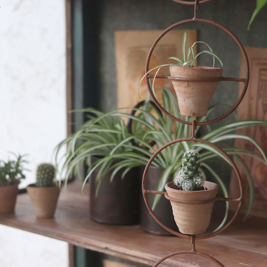 Styling With House Plants - the triangle rule