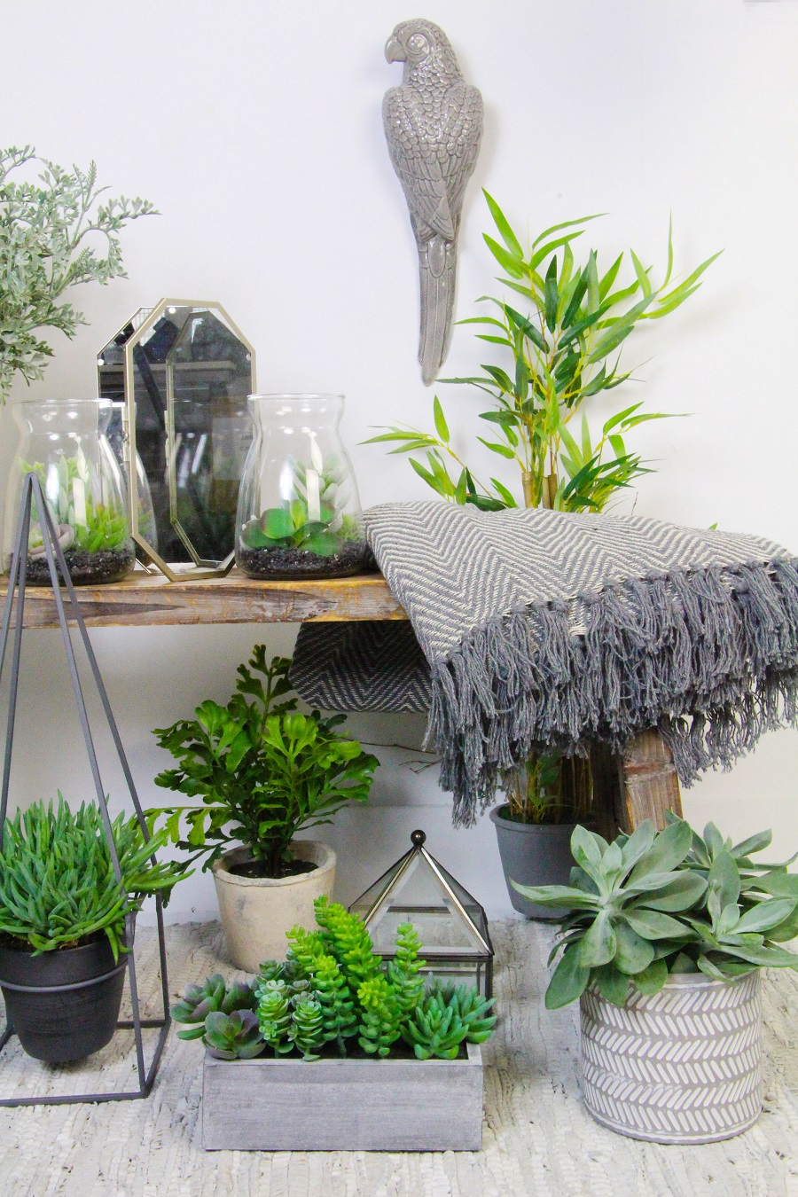 Styling With House Plants - mix plant species and containers
