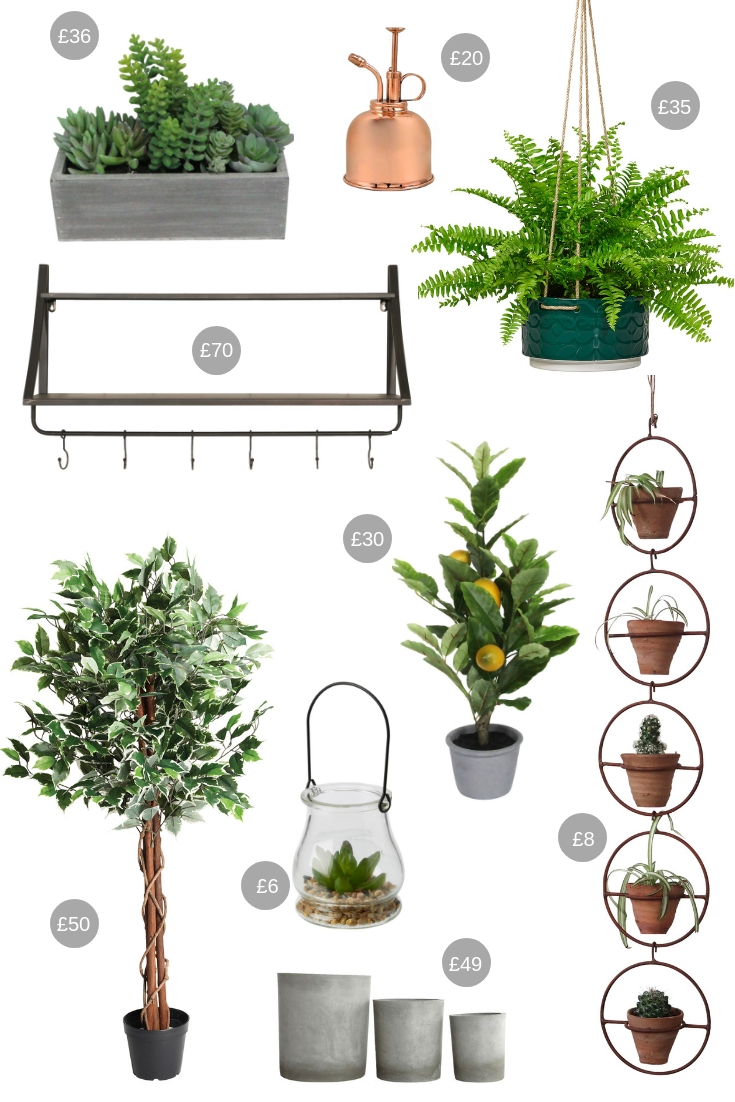 Christmas Gift Guide for Urban Jungle Lovers