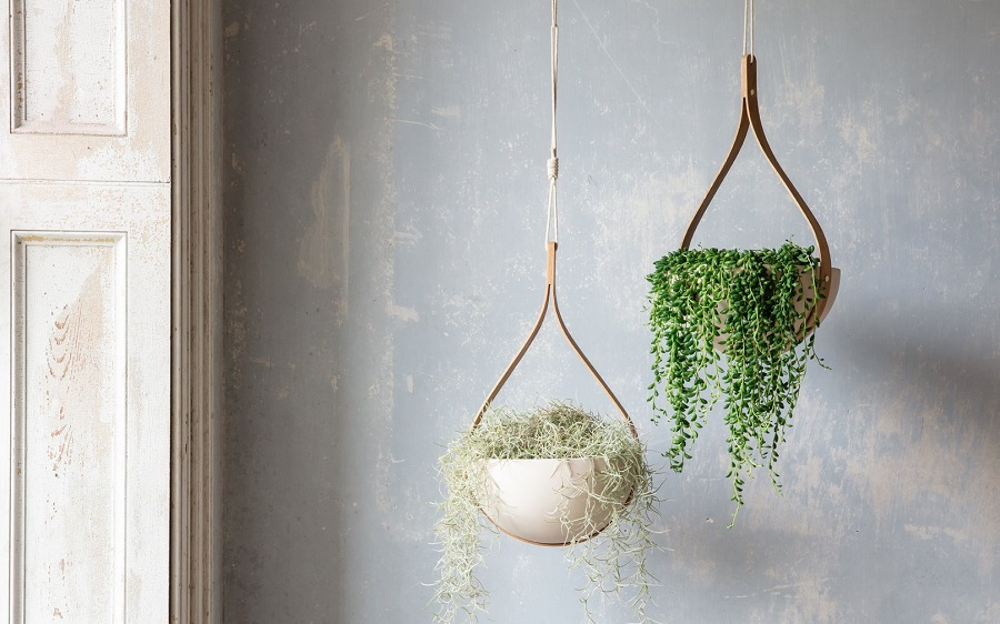 Trends Indoor Hanging Plant Pots