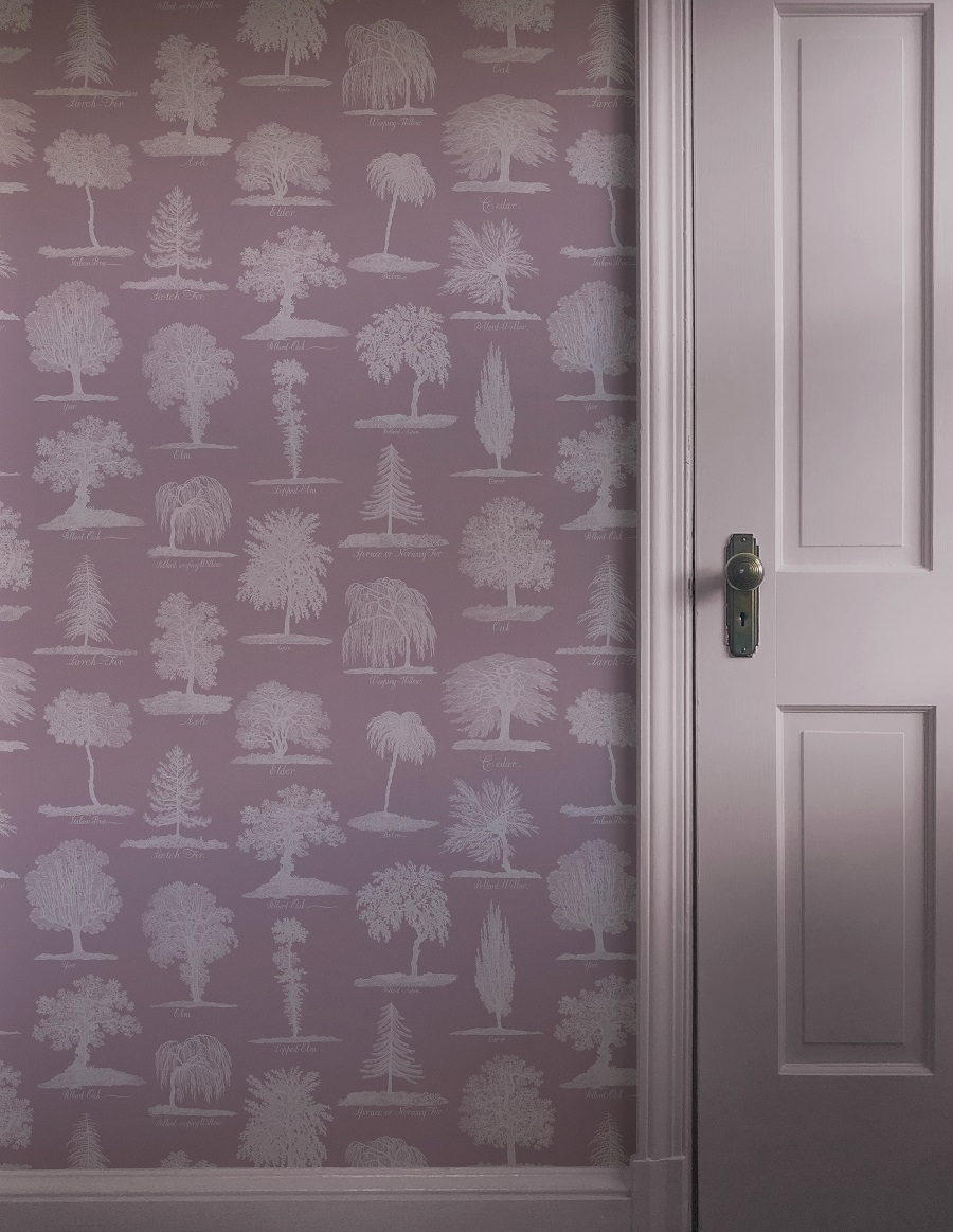 Add a Splash of Wonder Wallpaper to Your Walls