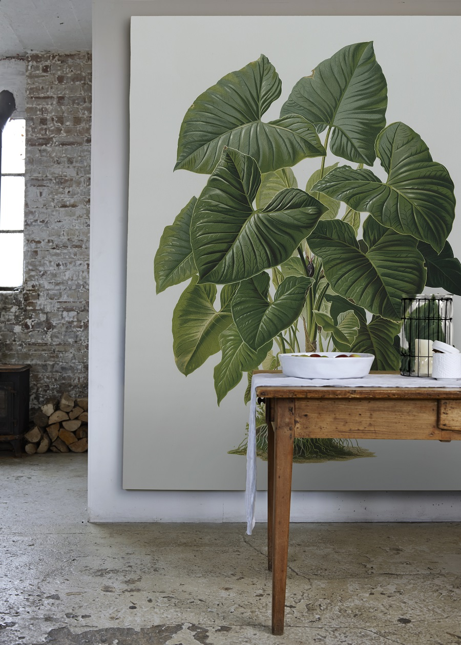4 Ways to Bring Botanicals into Your Home - Without the Need to Water