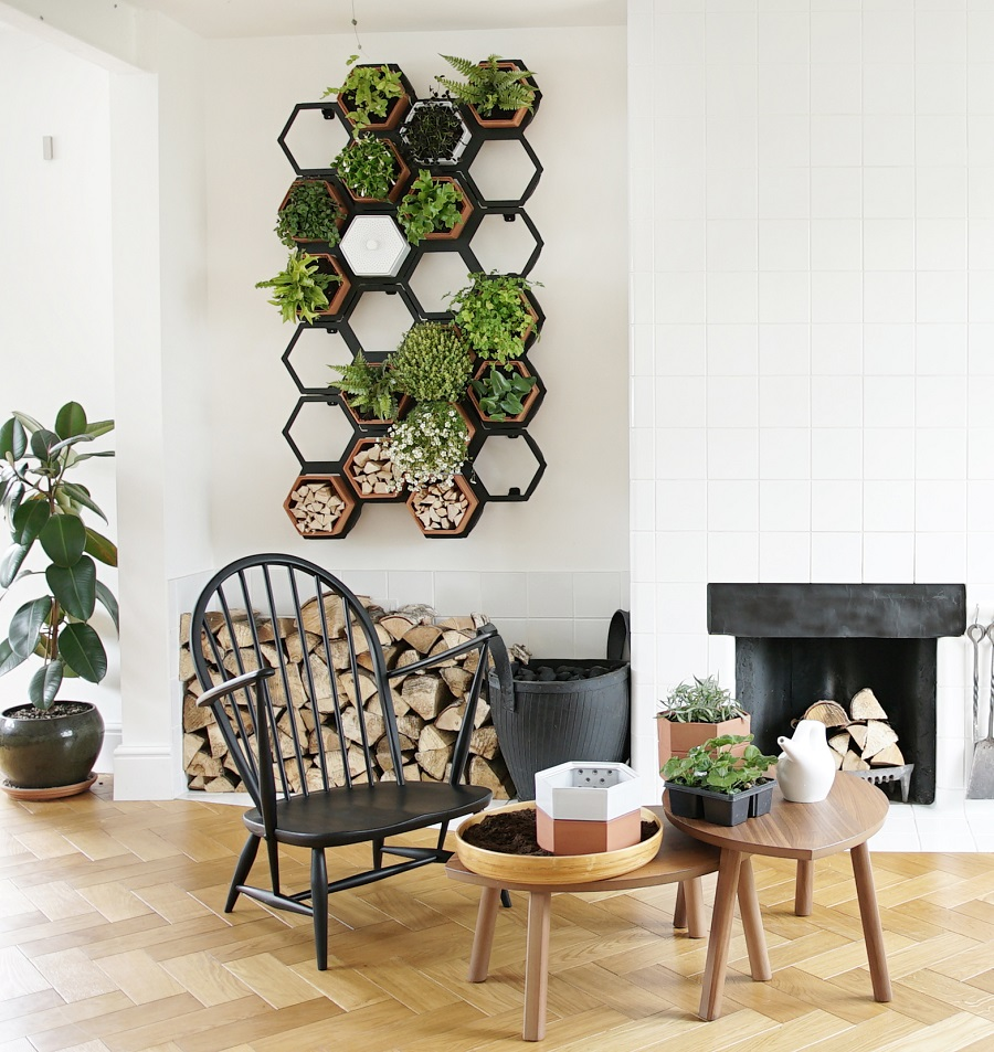 A Living Wall for Small Spaces